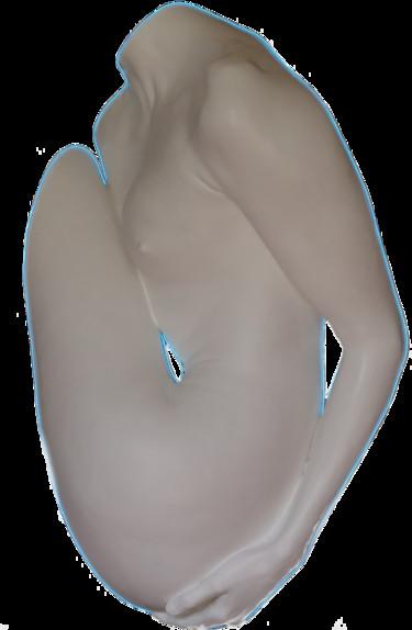 Ovoïde n°2